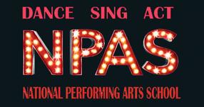NPAS Smash Logo