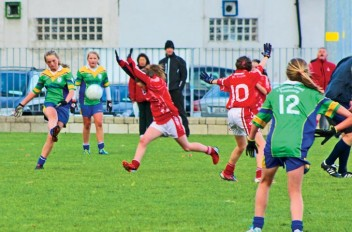 Clanna Gael Fontenoy Celebrating Success