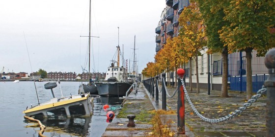 Clean up the Area with the Docklands Volunteer Day