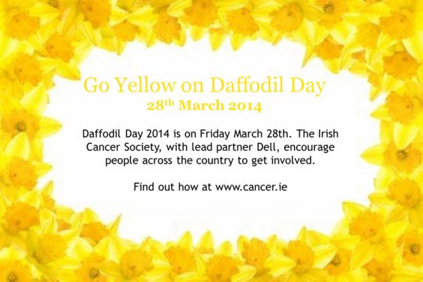 daffodil day5