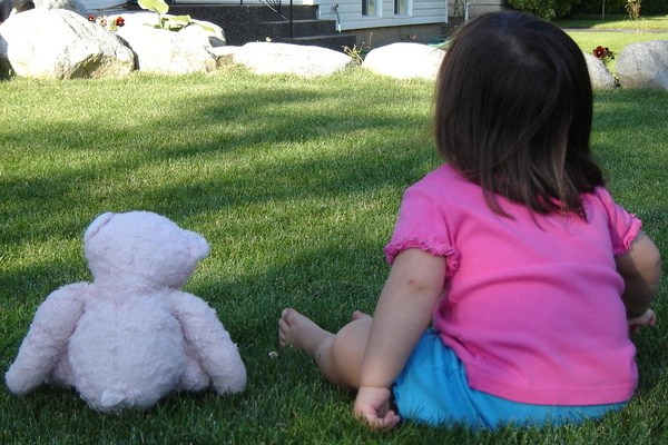 Teddy Bears Picnic 600x400