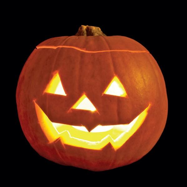 pumpkin pg 30