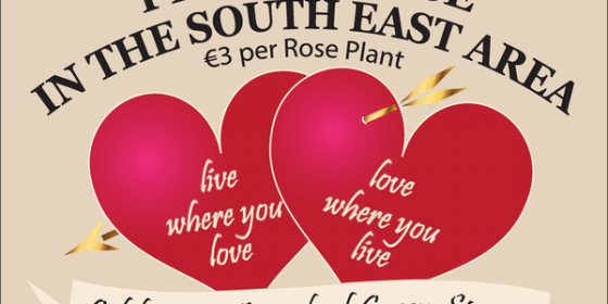 Plant a Rose with Friends of Green Spaces