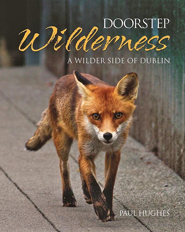 Doorstop Wilderness1 - book cover