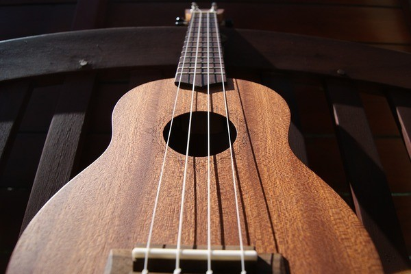 Learn Ukulele in a Day