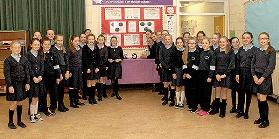 Young Scientist Exhibition - Two Sandymount Schools commended