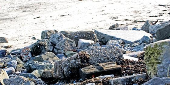 Sandymount Strand cleanup
