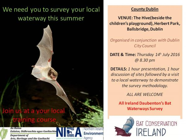 Poster For Daubenton's Bat Survey Training 2016