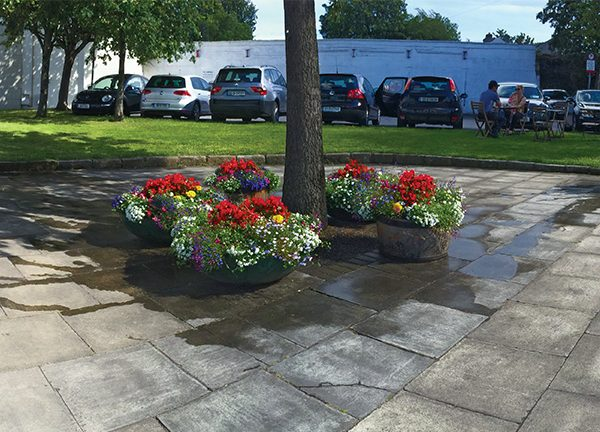 Pictured: Flowers on Donnybrook Plaza planted by DTT