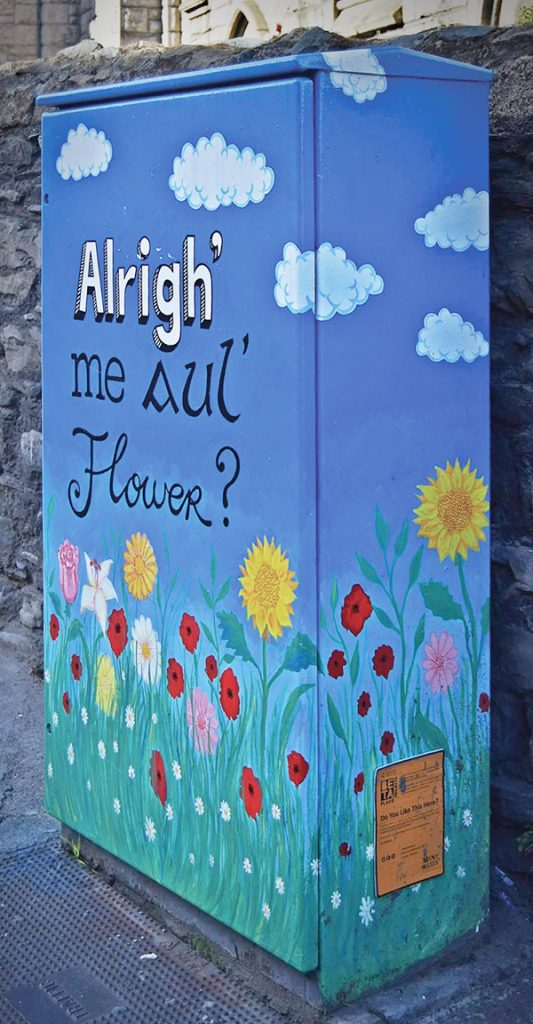 Pictured: 'Alrigh' me aul' Flower?' by Alison O'Grady. Located on Bridge St, Ringsend.