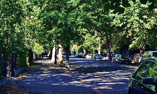 Pictured: A sunny day on Raglan Road. Photo: Kevin O'Gorman.