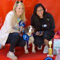 Sandymount Dog Show