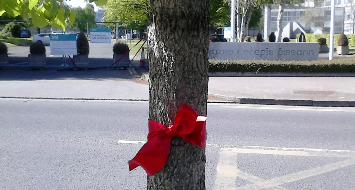 Tied to a tree: Councillor McCartan protects D4's elders
