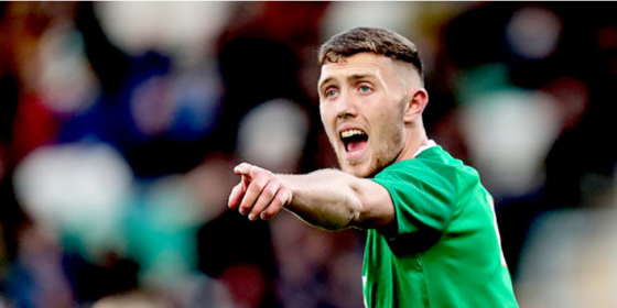 Double Defeat Throws Ireland's World Cup Hopes into Disarray